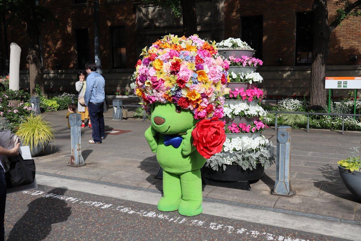 Nihon Oodouri・Garden Bear at Rose and Garden Market-1