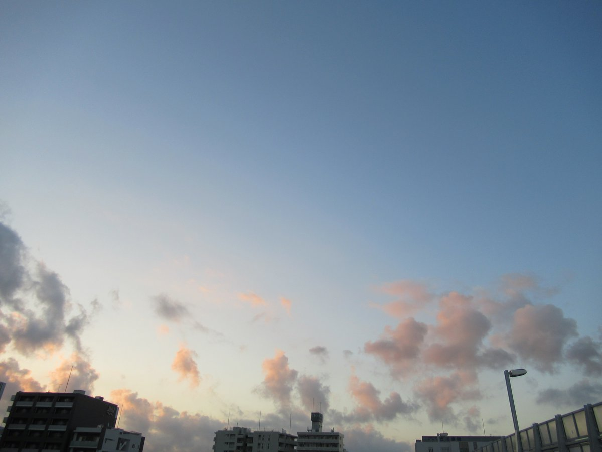 早朝の横浜新子安