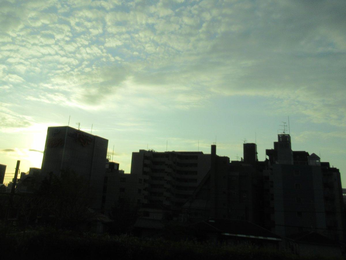 夜明けの横浜4