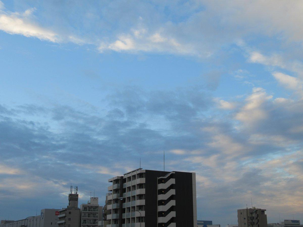 青空・神奈川区4