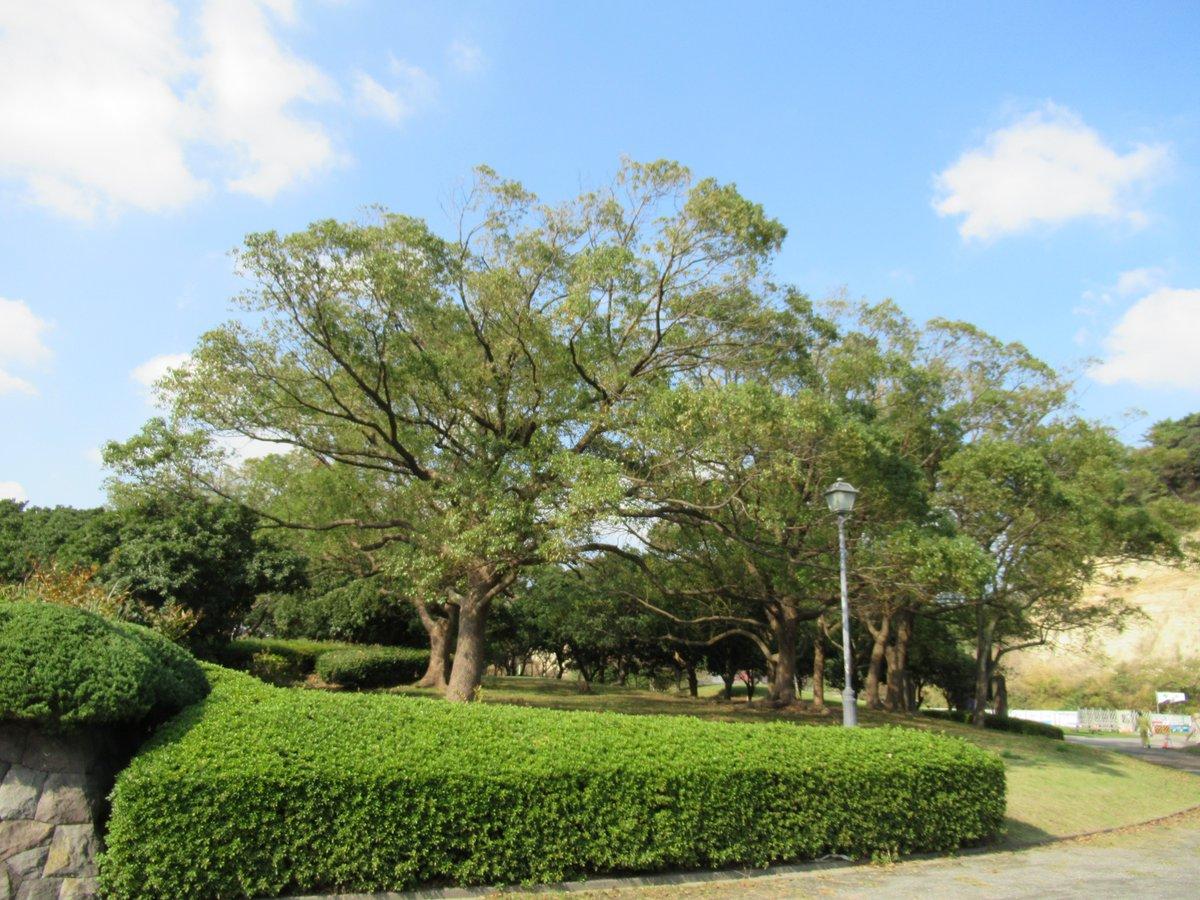 Honmoku City (Honmokushimin) Park-5