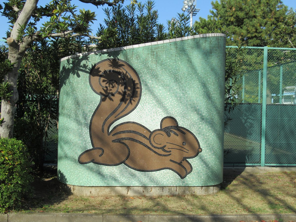 Honmoku City (Honmokushimin) Park・Picture of squirrel
