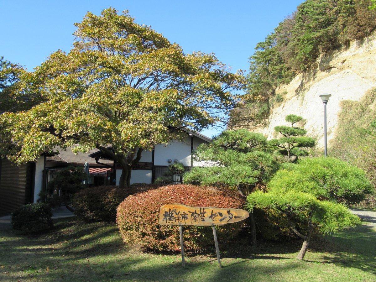 Honmoku City (Honmokushimin) Park・Honmoku City (Honmokushimin) Park