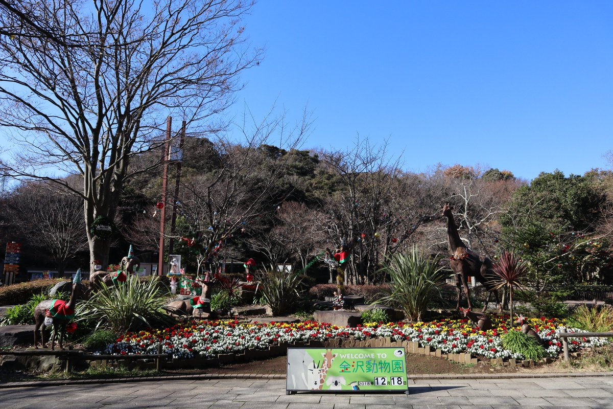 自然 動物園 金沢