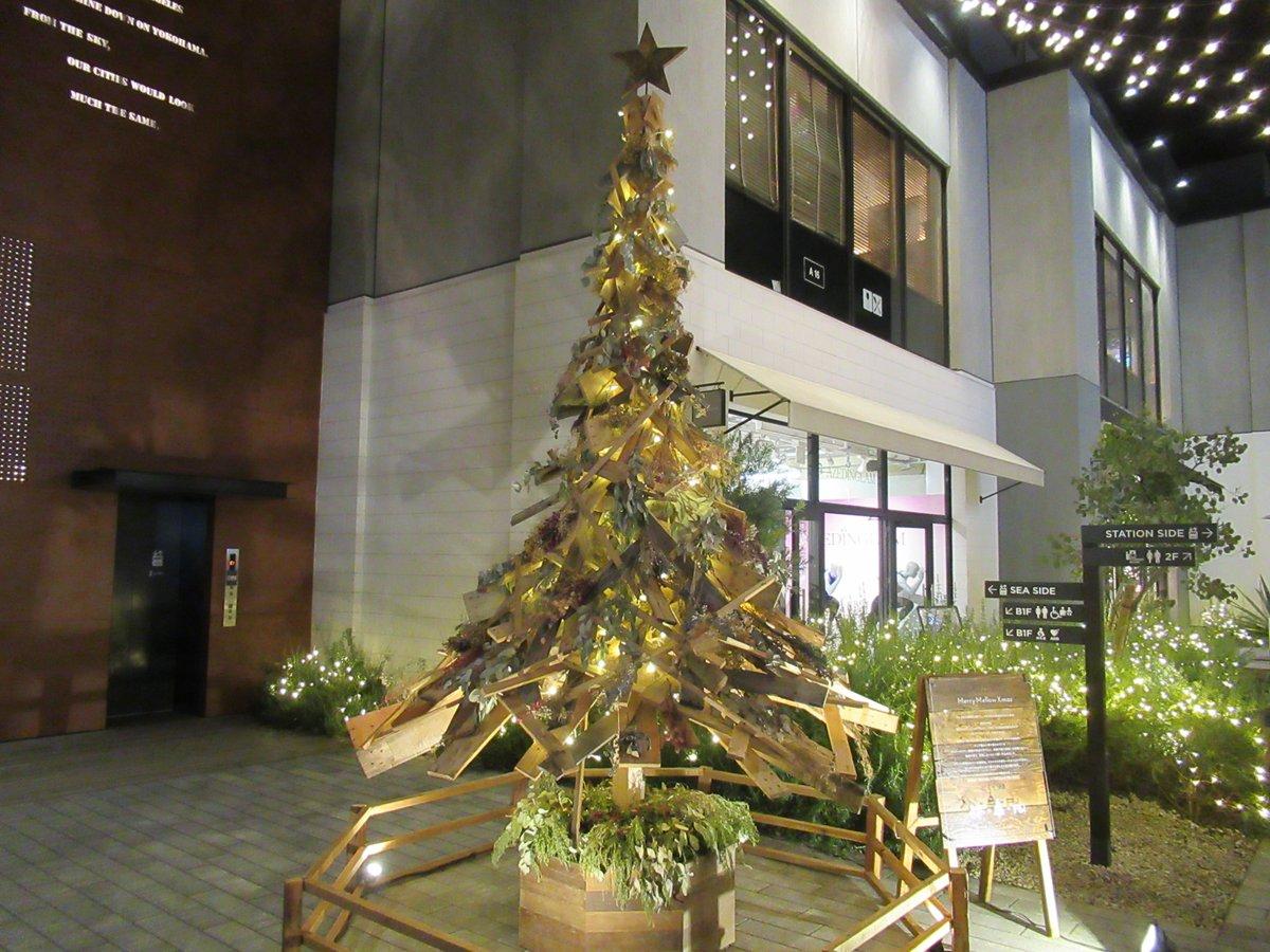Marine & Walk・Night view/Christmas Tree