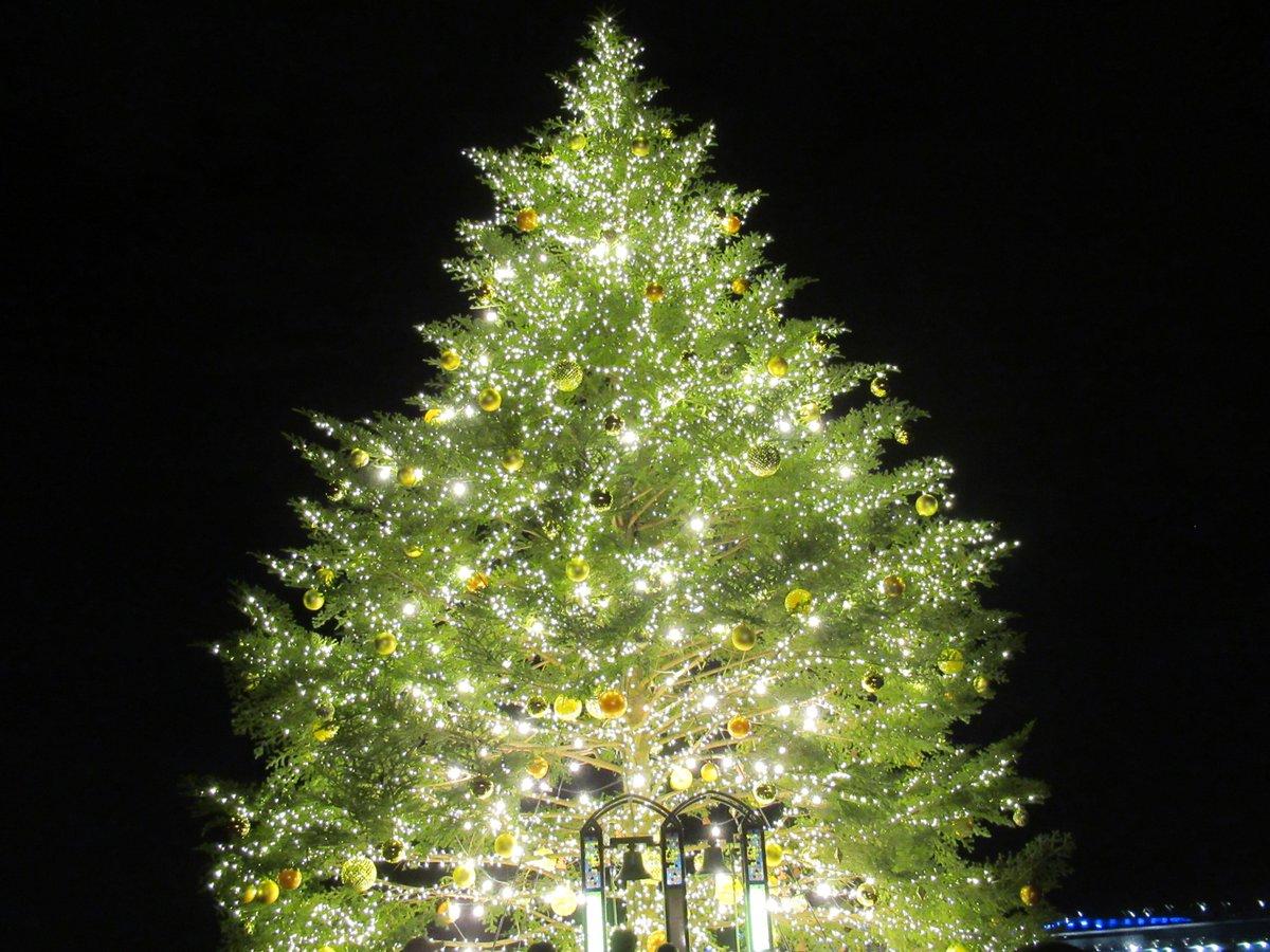 Red Brick Warehouse・Christmas market・tree large