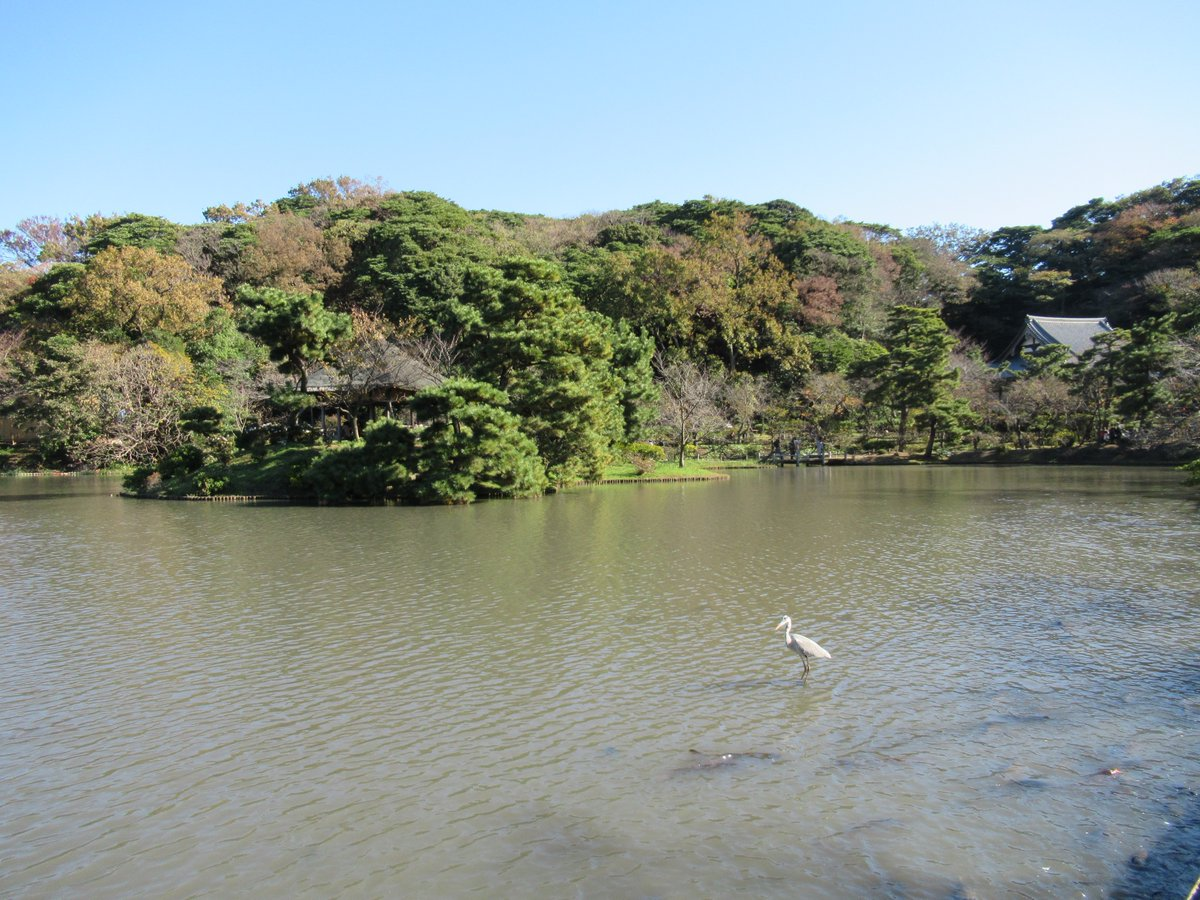 Yokohama Sankei Garden・Bird and Big Pond