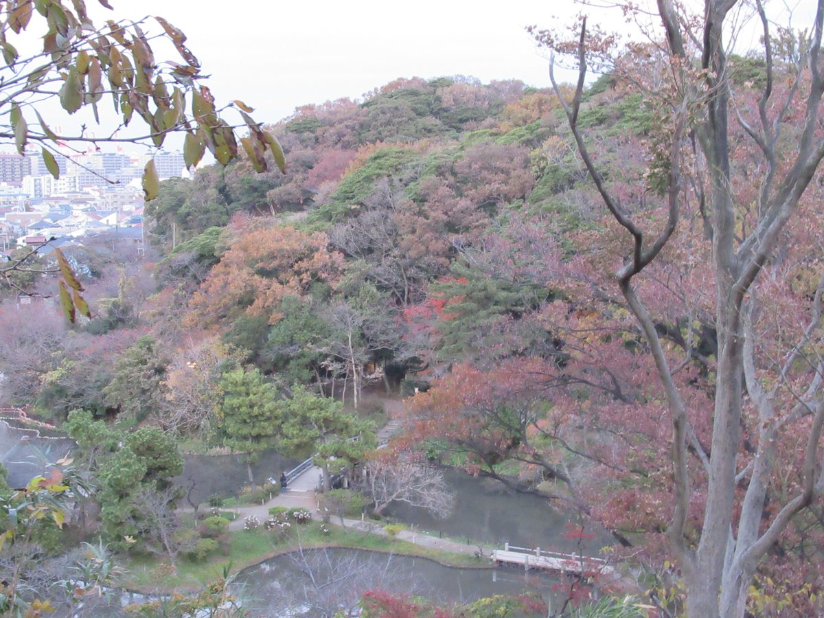 Yokohama Sankei Garden・Autumn Leaves and Big Pond