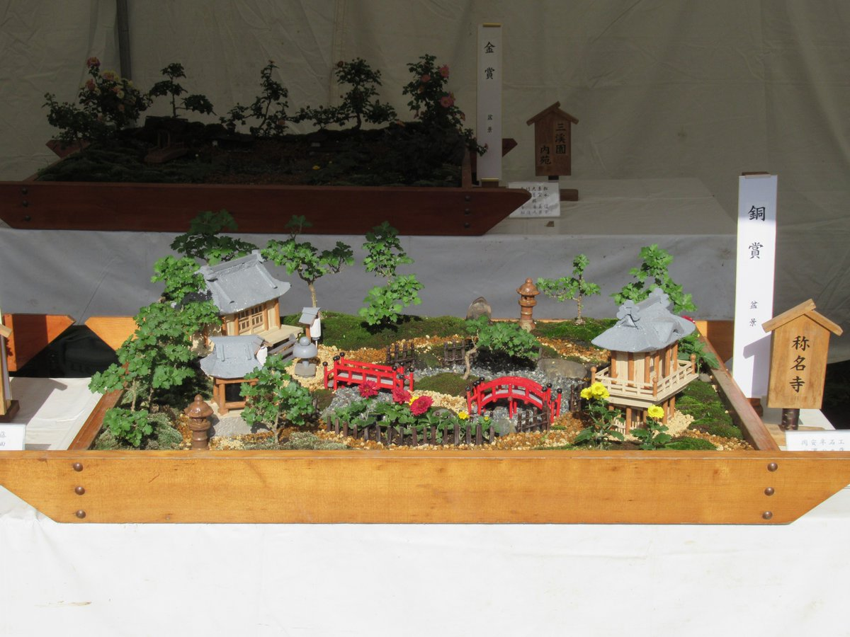 Small Chrysanthemum bonsai & Chrysanthemum Exhibition in Yokohama Sankeien Garden.bronze-prize.Shoumyouji