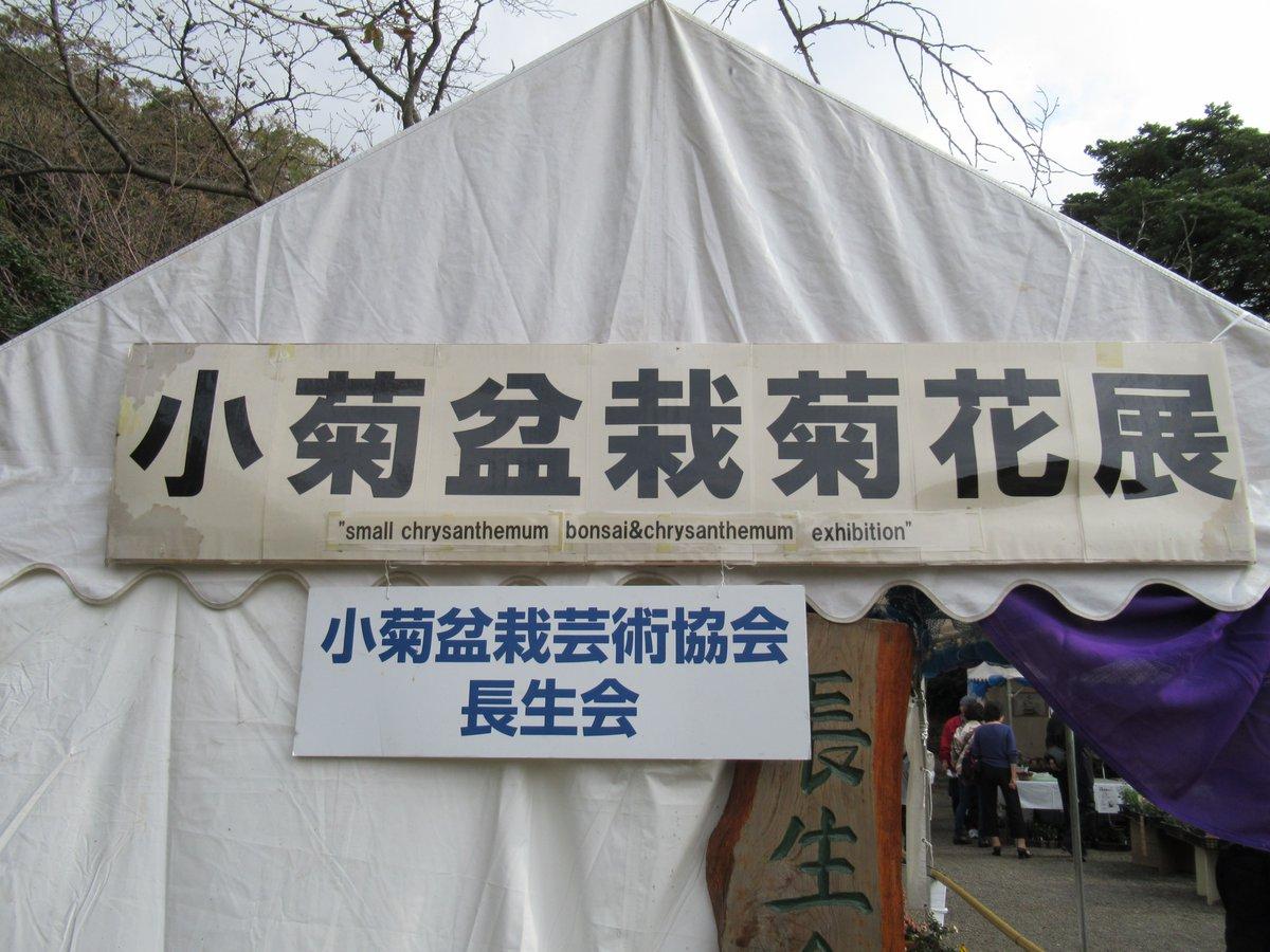 Small Chrysanthemum bonsai & Chrysanthemum Exhibition in Yokohama Sankeien Garden.Signboard