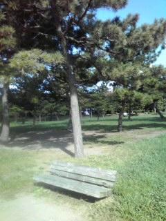 海の公園のベンチ
