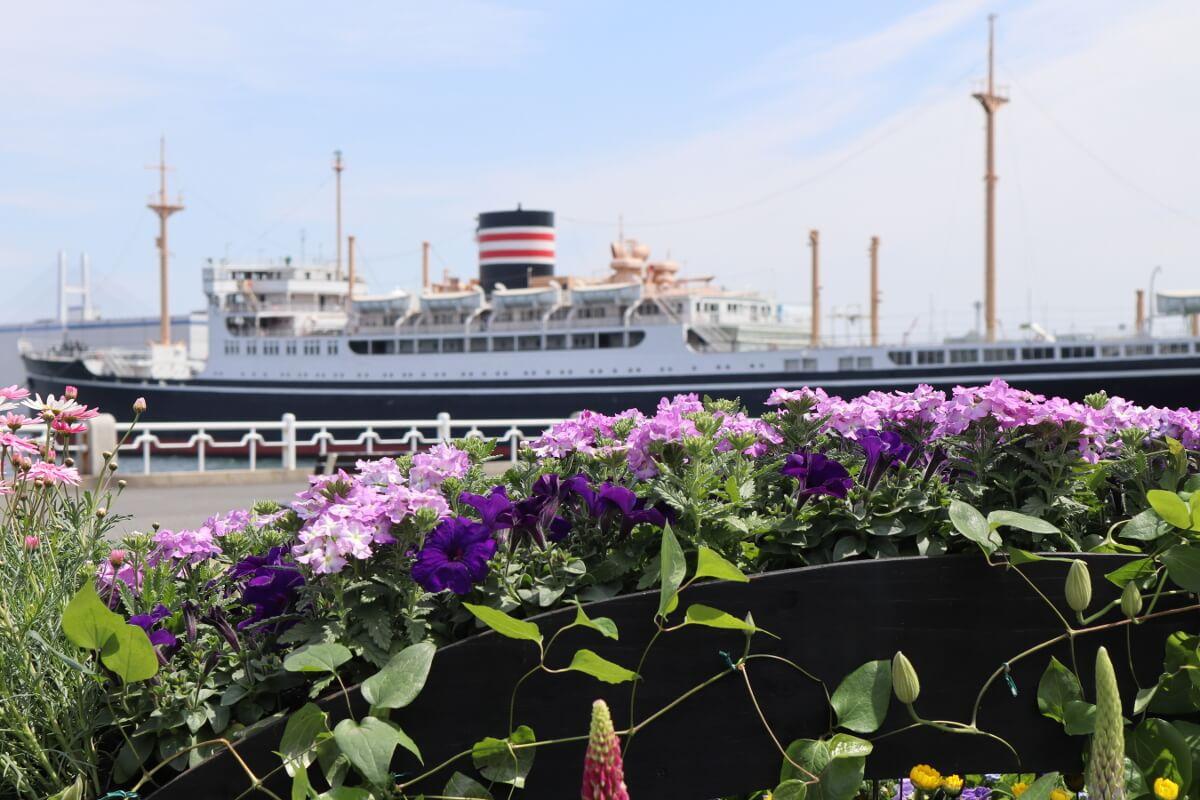 Yamashita Park・Flower and Cruise Ship-5