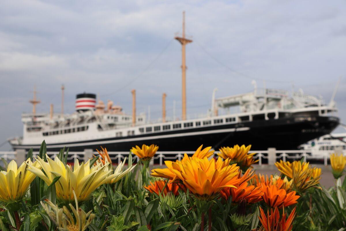 Yamashita Park・Flower and Cruise Ship・Hikawamaru-6