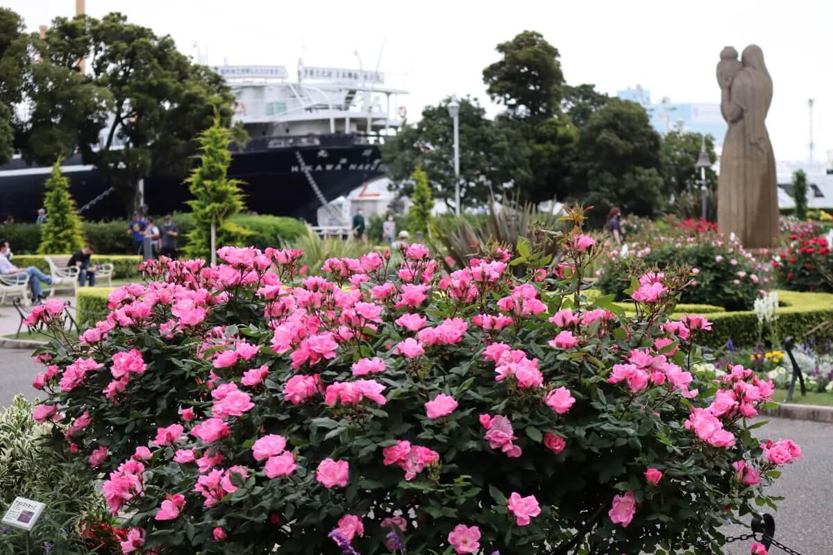 Yamashita Park・Rose and Guardian of Water-2