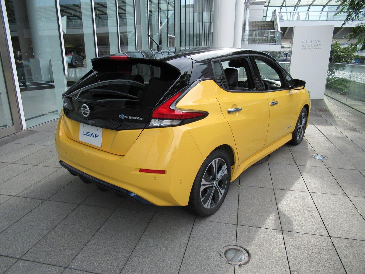 Nissan Leaf・behind