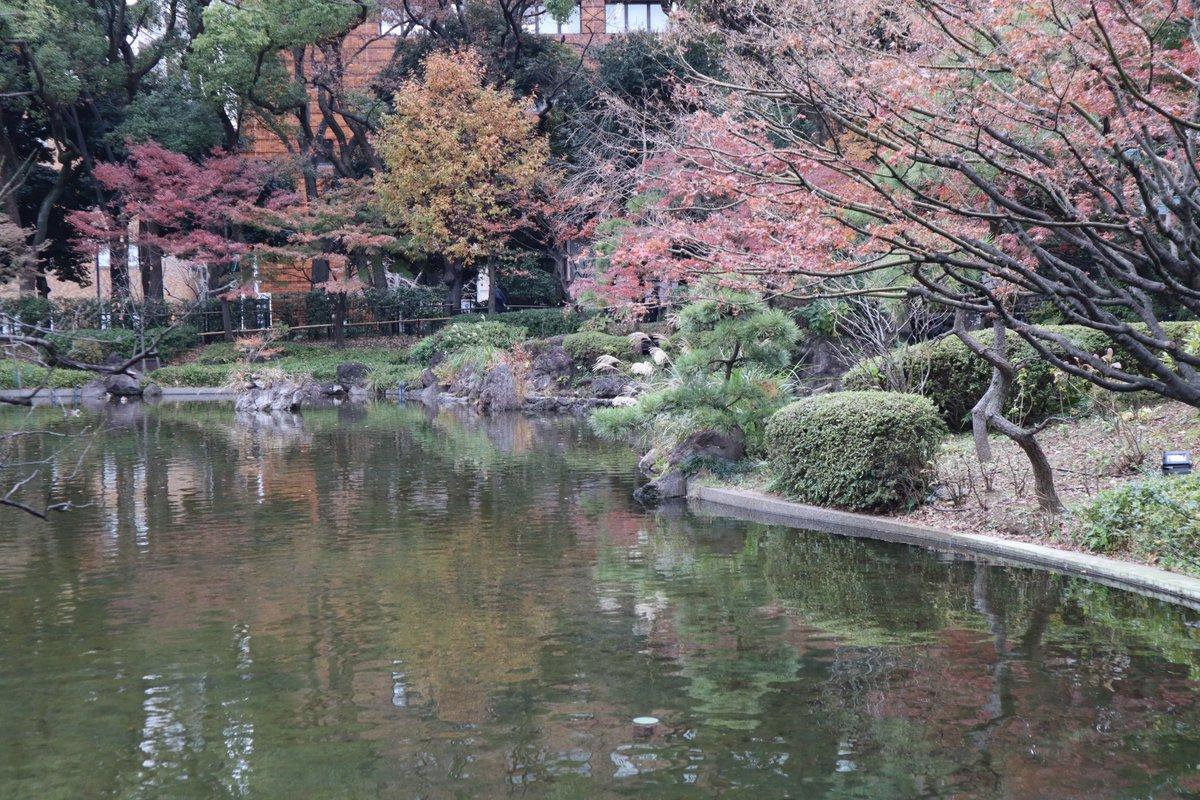 Yokohama Park・Japanese Garden・kouyou-2