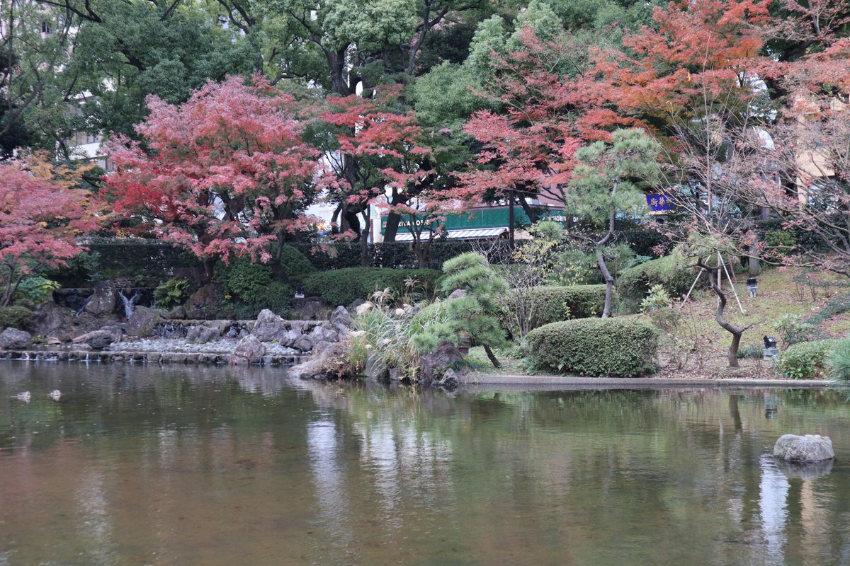 Yokohama Park・Japanese Garden・kouyou-3