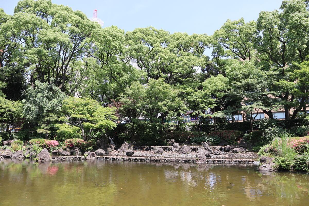 Yokohama Park・Japanese Garden・pond-1